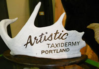 Contact Artistic Taxidermy